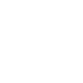 Logo V.I.T.A. bianco